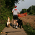 What Makes Dogs Good Running Partners?