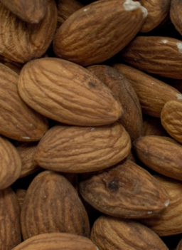 Dogs Eat Almonds Safe