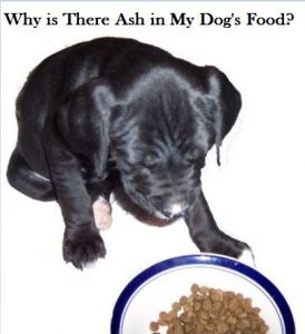 ash-in-dog-food